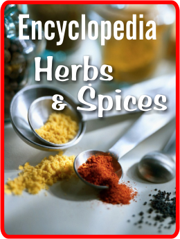 encycl-spices2
