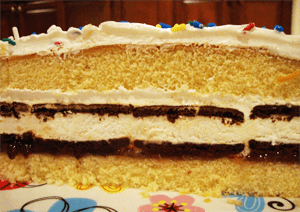 easy-ice-cream-cake2