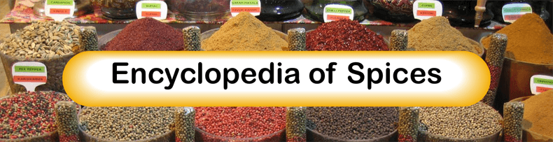 Title Image for Findlay Foods Encyclopedia of Spice Article