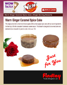 wow-ginger-cake-225